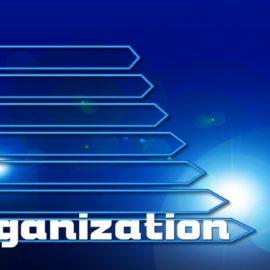 Jak dobra organizacja uczy pracować mądrze